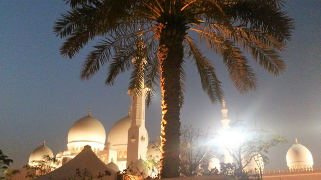 sheikh-zayed-mosque-with-a-palm-tree